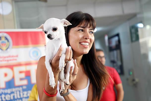 alcaldesa-lanza-registro-de-mascotas-y-animales-de-compania-en-antofagasta