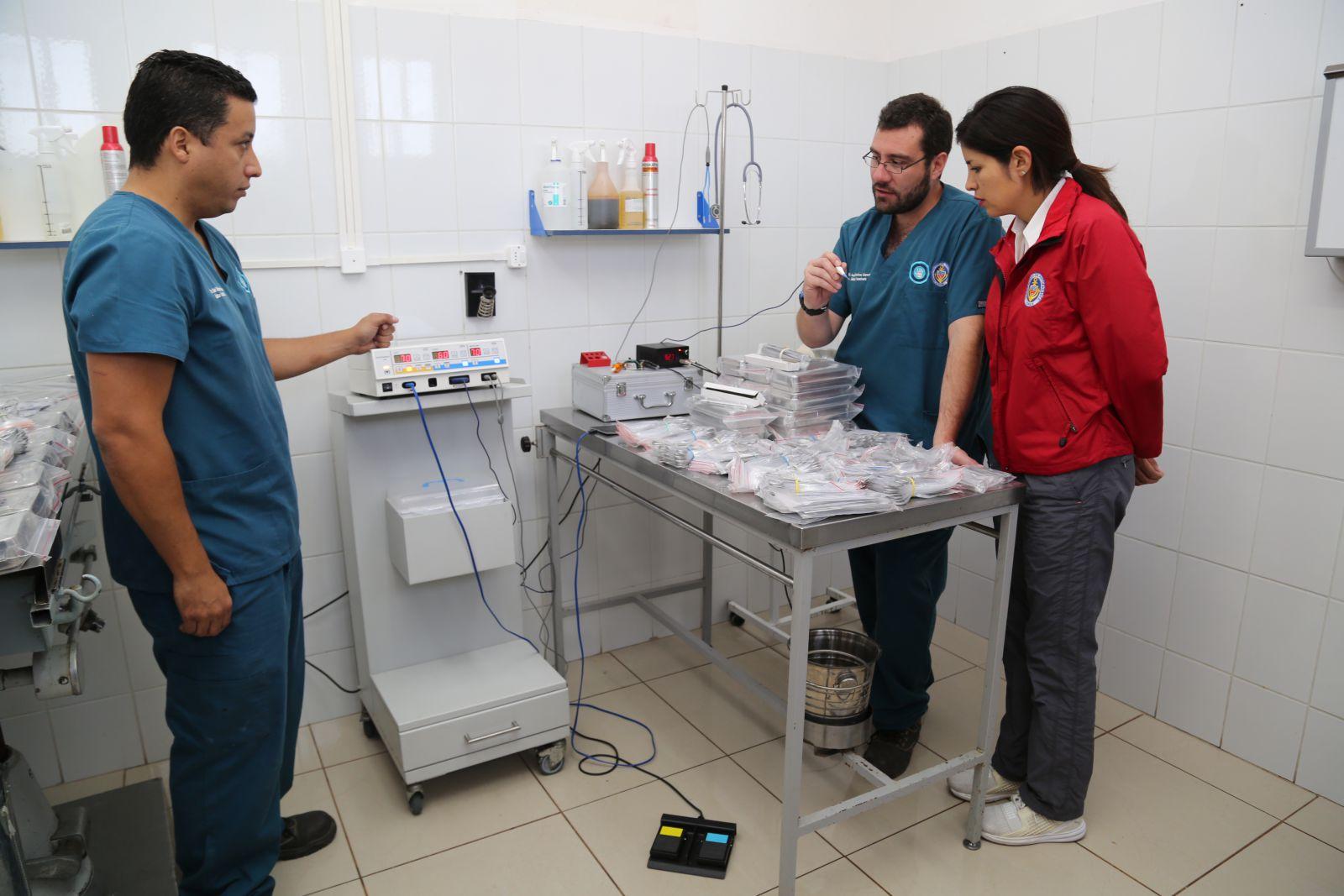 alcaldesa-y-concejo-municipal-aprueban-realizar-5-mil-esterilizaciones-para-felinos-y-caninos-de-antofagasta