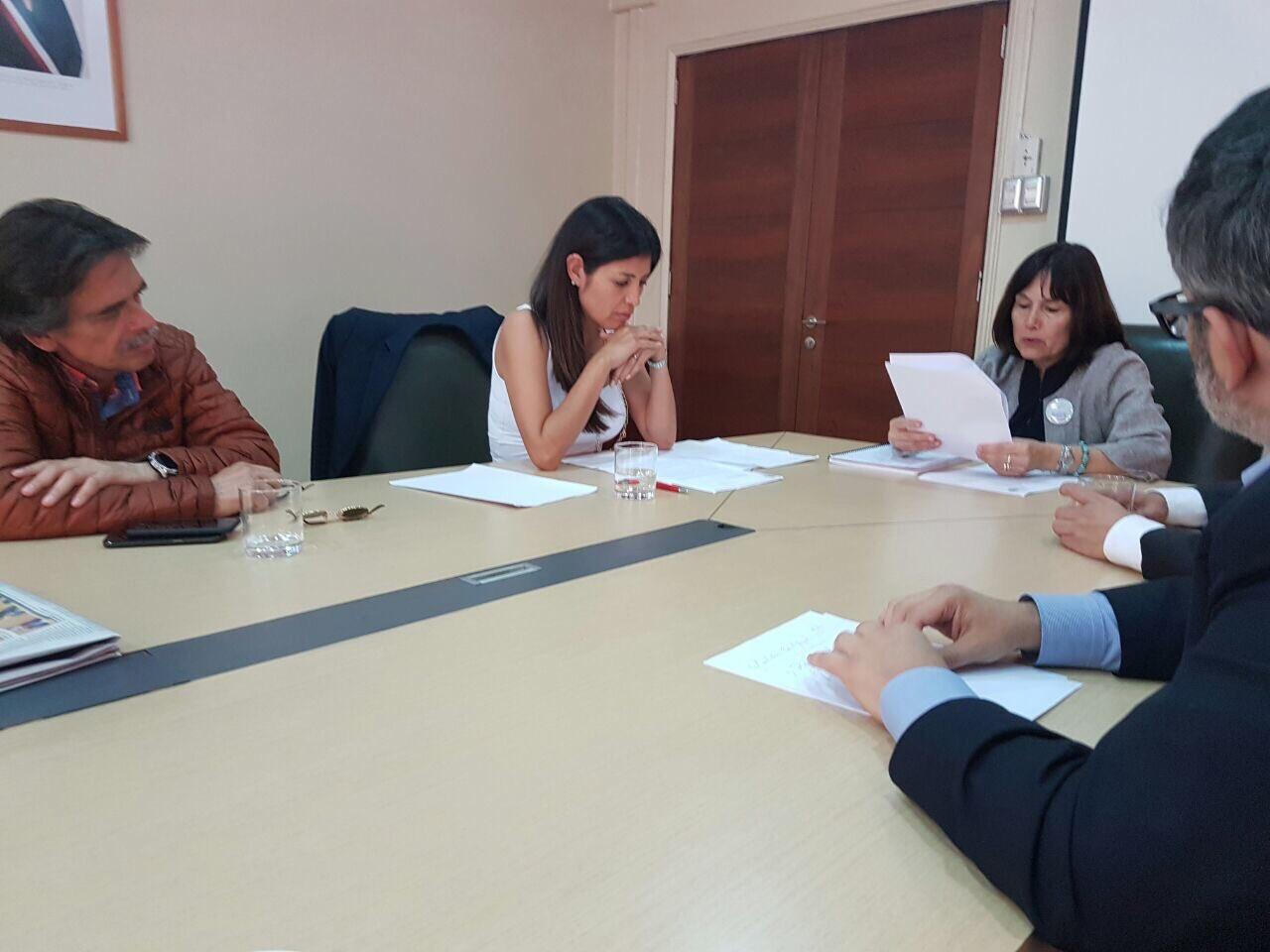 alcaldesa-karen-rojo-se-reune-con-ministra-de-salud-por-medicos-sin-eunacom
